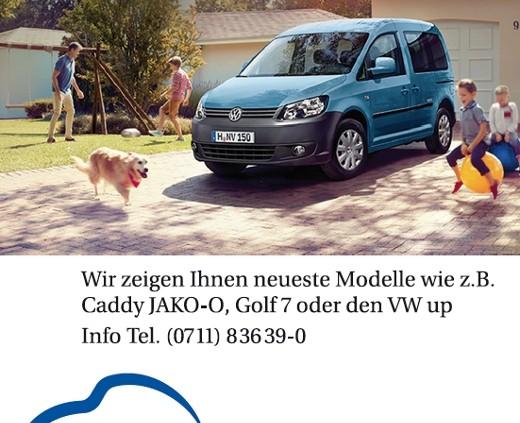 autohaus-messe-korntal-130428-1