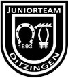 Juniorteam TSF Ditzingen bei den VW Junior Masters
